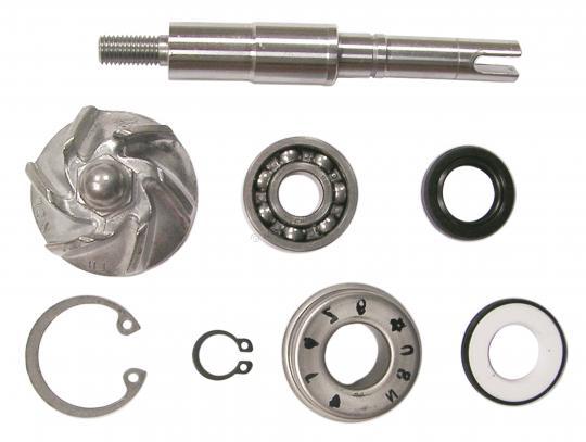 Honda SES 125-3 Dylan 03 Water Pump Repair Kit