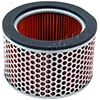 HiFlo Motorcycle Air Filter