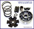 Piaggio Free 50 (Disc model) 95-00 Variator Kit Complete