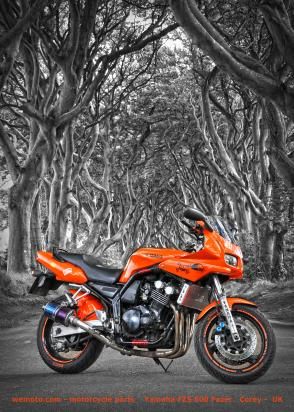 Picture of Motorcycle Retro Poster Fazer Size A1 594 x 841mm