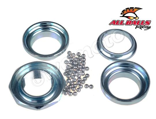 Picture of Headrace Bearing Set