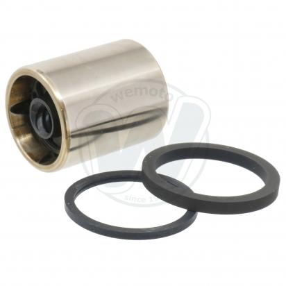 Brake Piston and Seals Rear Caliper Large