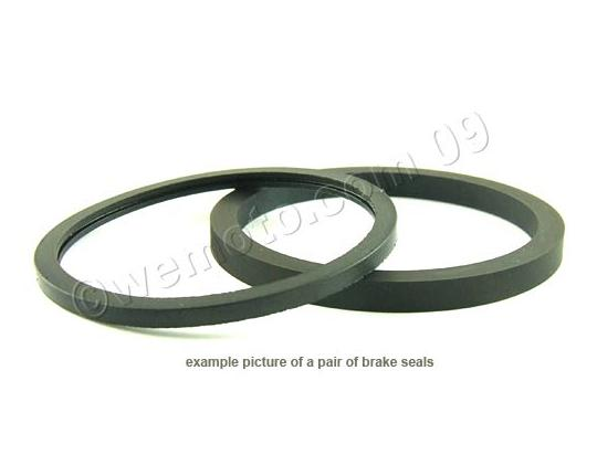 Picture of Kawasaki KLR 650 (KL 650 A3) 89 Brake Piston Seal and Dust Seal Front Brake