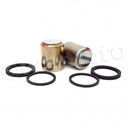 Picture of Brake Pistons and Seals Yamaha 3LD-W0057-50