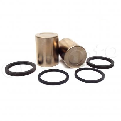 Picture of Brake Pistons and Seals Triumph T2020356