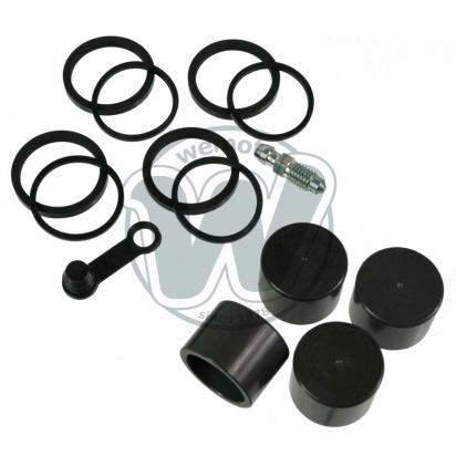 Picture of Brake Caliper Pistons and Seals Kit  KTM Duke 125 200 250 390 for  Bybre Radial Caliper Front
