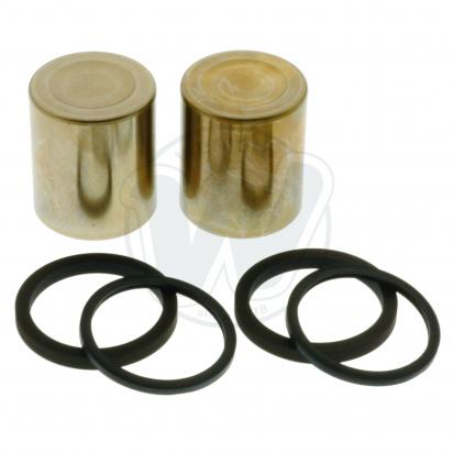 Picture of Brake Caliper Pistons and Seals Triumph T2020050