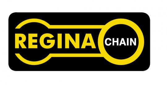 Regina Classic Chain- 1/2inch x 5/16inch - 129 links