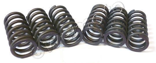 Picture of Clutch Spring Kit Heavy Duty OD=15.10mm Length=29.00mm(2.00)