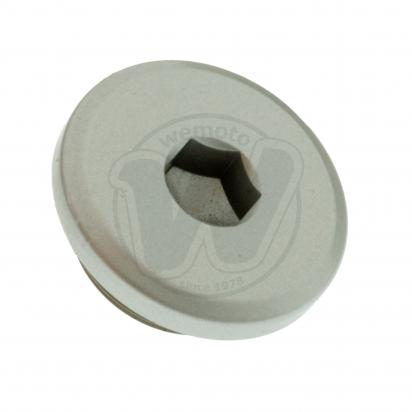 Picture of Inspection Cap 35mm
