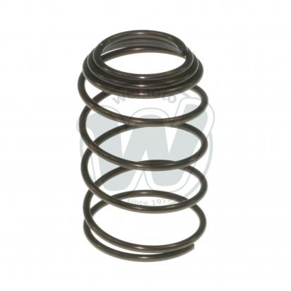 Oil Filter Screen Spring