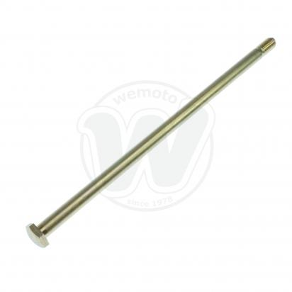 Swinging Arm Pivot Bolt