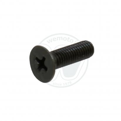 Front Brake Master Cylinder Cap Screw