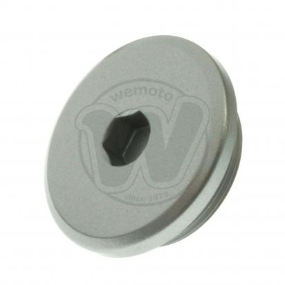 Inspection Cap 45mm