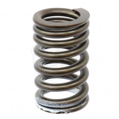 Picture of Valve Spring