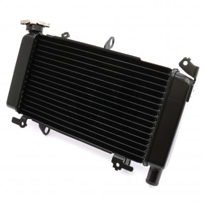 Picture of Radiator as Honda 19010-MGZ-D41 CB500F 13-15