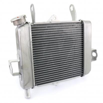 Picture of Suzuki GSXS 125 AL8  GSX-S 125 18 Radiator