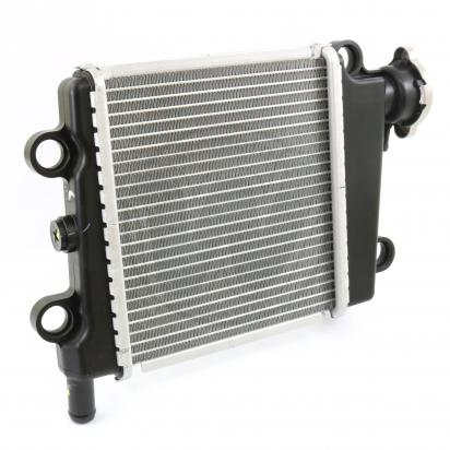Picture of Radiator Assembly Yamaha GPD125 N-Max 2015
