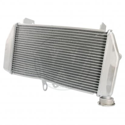 Picture of Radiator as Yamaha 1WD-E2461-00
