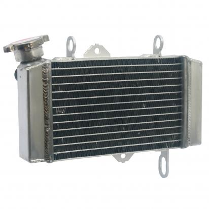 Picture of Radiator as Yamaha 5D7-E2461-20-00