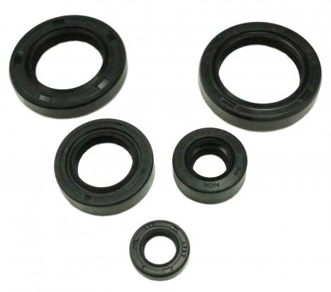 Picture of Engine Oil Seal Kit