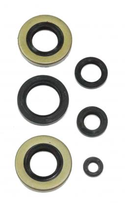 Engine Oil Seal Kit