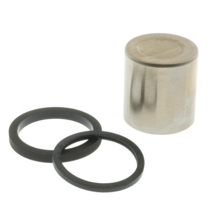 Piston and Seal Set